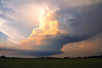 "An ""LP"" supercell thunderstorm with it's saucer-shaped base is lit in creams and golds by the setting sun over central Oklahoma in early may. Such storms can produce extremely large hail."
