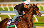 November 1, 2020: Channel Maker, trained by trainer William I. Mott, exercises in preparation for the Breeders' Cup Turf at  Keeneland Racetrack in Lexington, Kentucky on November 1, 2020. Alex Evers/Eclipse Sportswire/Breeders Cup /CSM