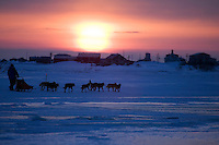 Mike Jayne mushes inbound to Unalakleet into setting sun during 2006 Iditarod Western Alaska Winter