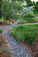 Gravel stream bed for rain percolation in front yard with California native plants, Heath-Delaney garden