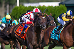 SARATOGA SPRING,NY-AUG 24: Annals of Time,ridden by Javier Castellano,wins the Sword Dancer Stakes at Saratoga Race Track on August 24,2019 in Saratoga Spring,New York. Kaz Ishida/Eclipse Sportswire/CSM