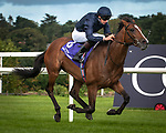 DUBLIN - SEPTEMBER 09: Nelson, ridden by Donnacha O'Brien, wins the Willis Towers Watson Champion Juvenile Stakes, Win and You're In for the Breeders' Cup Juvenile Turf, at Leopardstown Racecourse in Leopardstown, Co. Dublin, Ireland. (Photo by Sophie Shore/Eclipse Sportswire/Getty Images)