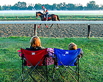 SARATOGA SPRINGS, NY - AUGUST 27: Fans watch as horses exercise on the Oklahoma Training Track at sunrise on Travers Stakes Day at Saratoga Race Course on August 27, 2016 in Saratoga Springs, New York. (Photo by Scott Serio/Eclipse Sportswire/Getty Images)