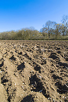 Winter ploughing ready for drilling in spring - Suffolk, April