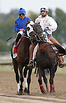 September 21, 2013.  Pennsylvania Derby contender Transparent, Irad Ortiz, Jr. up; trained by Kiaran McLaughlin. Will Take Charge, trained by D. Wayne Lukas and ridden by Luis Saez, wins the Pennsylvania Derby at  Parx Racing, Bensalem, PA.  ©Joan Fairman Kanes/Eclipse Sportswire