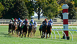 LEXINGTON, KY - OCTOBER 8: Mongolian Saturday #12, ridden by Carlos Montalvo, wins the Woodford S. at Keeneland Racecourse on October 8, 2016 in Lexington, KY. (Photo by Sophie Shore/Eclipse Sportswire/Getty Images)