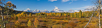 Falls Colors near Oxbow Bend, Grand Tetons National Park, Wyoming
