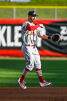 Dean Anna (11) of the Memphis Redbirds during the game against the Salt Lake Bees in Pacific Coast League action at Smith's Ballpark on May 24, 2016 in Salt Lake City, Utah. The Bees defeated the Redbirds 7-5. (Stephen Smith/Four Seam Images)