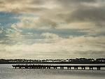 Old cement pier located in a nature preserve in Cape San Blas, FL. The birds are mostly Cormorants