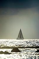 A sailboat near the Big Island of Hawai'i on a sunny afternoon.