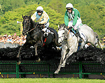 23 May 09: Eventual winner Moon Dolly (left), Xavier Aizpuru battle with Jellyberry, Paddy Young up, as they rush to the finish in The Valentine Memorial Sport of Queen's Stakes at the Fair Hill Steeplechase Races in Maryland