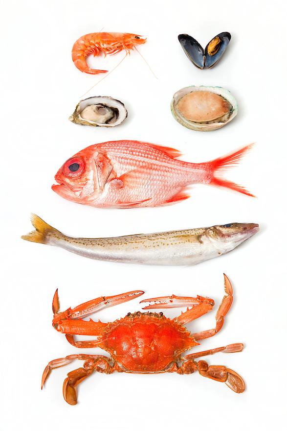 South Australian seafood