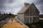 Illinois Corn Harvest 2014