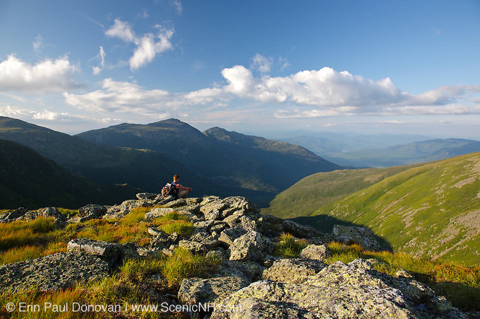 Hiker takes in the view of the Great Gulf Wilderness from along the Appalachian Trail (Gulfside Trail) in the White Mountains, New Hampshire USA during the summer months. Mount Adams (C), Mount Madison (R)