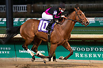 """November 28, 2020: Runway Magic, trained by George """"Rusty"""" Arnold and ridden by Julien Leparoux, wins Race 12, maiden special weight, at Churchill Downs in Louisville, Kentucky on November 28 2020. Jessica Morgan/Eclipse Sportswire."""