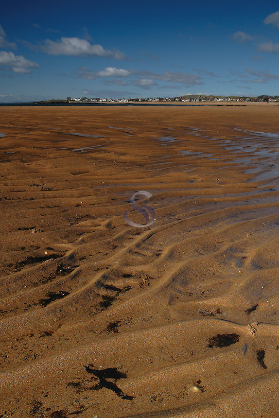 Sand ripples on the award winning beach at Elie, the East Neuk of Fife<br /> <br /> Copyright www.scottishhorizons.co.uk/Keith Fergus 2011 All Rights Reserved