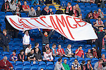 """Banner with the words """"No Team GB"""" being removed by security before kick off of the .Wales v Norway Vauxhall international friendly match at the Cardiff City Stadium in South Wales..Editorial use only."""