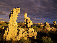 Tufa up close with side lighting and break in the clouds. Mono Lake, California.