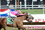 Blink Luck, with jockey Garrett Gomez aboard, outduels Havre de Grace, with Ramon Dominguez riding, to catch her at the wire an win the Grade 1 Delaware Handicap at Delaware Park on July 16, 2011 in Stanton, Delaware