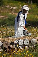 Afrique/Afrique du Nord/Maroc/Province d'Agadir/Tighanimine Elbaz: Apiculteur berbère enfumant ses ruches traditionnelles en roseau