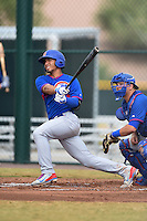 Chicago Cubs shortstop Gleyber Torres (13) during an Instructional League intersquad game on October 9, 2014 at Cubs Park Complex in Mesa, Arizona.  (Mike Janes/Four Seam Images)