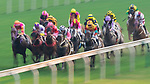Horse Top Beautiful #11 (left) ridden by Joao Moreira competes during the race 9 of HKJC Horse Racing 2017-18 at the Sha Tin Racecourse on 16 September 2017 in Hong Kong, China. Photo by Victor Fraile / Power Sport Images