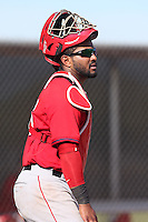 Pedro Pizarro #36 of the Los Angeles Angels during a Minor League Spring Training Game against the Chicago Cubs at the Los Angeles Angels Spring Training Complex on March 23, 2014 in Tempe, Arizona. (Larry Goren/Four Seam Images)