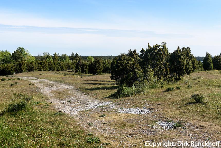 Landschaft bei St.Olofsholm auf der Insel Gotland, Schweden, Europa<br /> scenery nearst.Olofsholm, Isle of Gotland Sweden