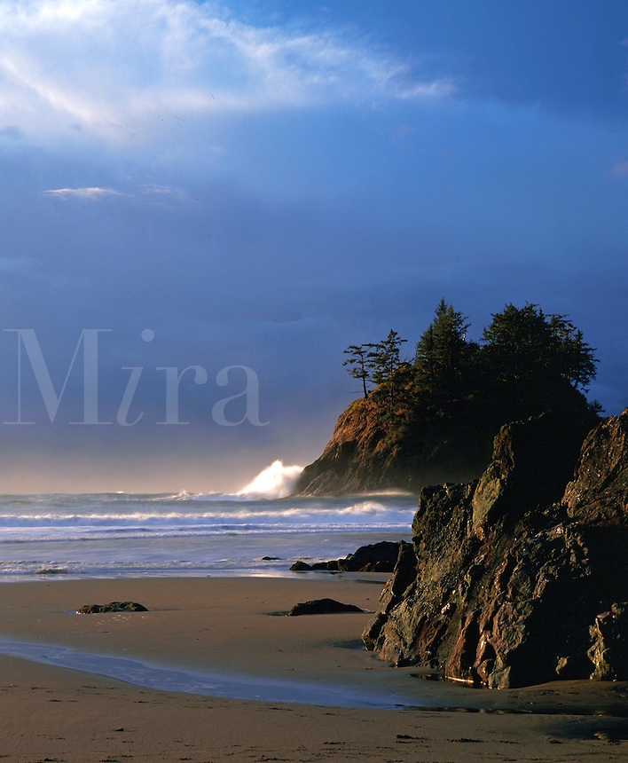 Trinidad State Beach at dusk. California.