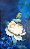 Franco, FLOWERS, BLUMEN, FLORES, paintings+++++,ITZP07,#f#, EVERYDAY