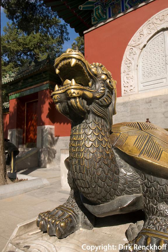 China, Peking (Beijing), Schildkröte vor weiße Dagoba (Baita) auf der Insel Qiongdao  im Beihai (Nördlicher See)