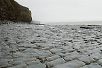 Llanwit Major, Wales UK.  Beach at low tide showing stratification of rock formation.
