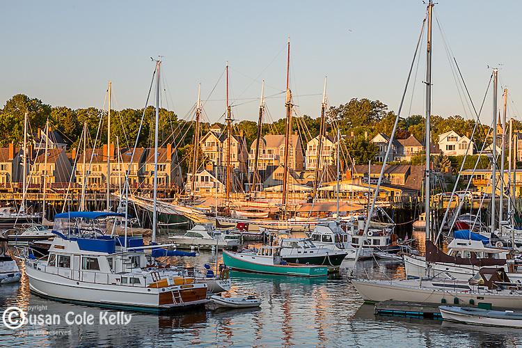 Sailboats at sunrise in Camden, Maine, USA