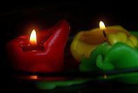 Llama-Flame. Photo: VizzorImage / Luis Ramirez / Staff