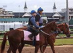 LOUISVILLE, KY - APRIL 27: Taxable (Tapit x Jackpot Joanie, by Giant's Causeway) is led onto the track by her trainer Steven M. Asmussen in preparation for the Kentucky Oaks with exercise rider Abel Flores at Churchill Downs, Louisville KY. Owner Winchell Thoroughbreds LLC. (Photo by Mary M. Meek/Eclipse Sportswire/Getty Images)