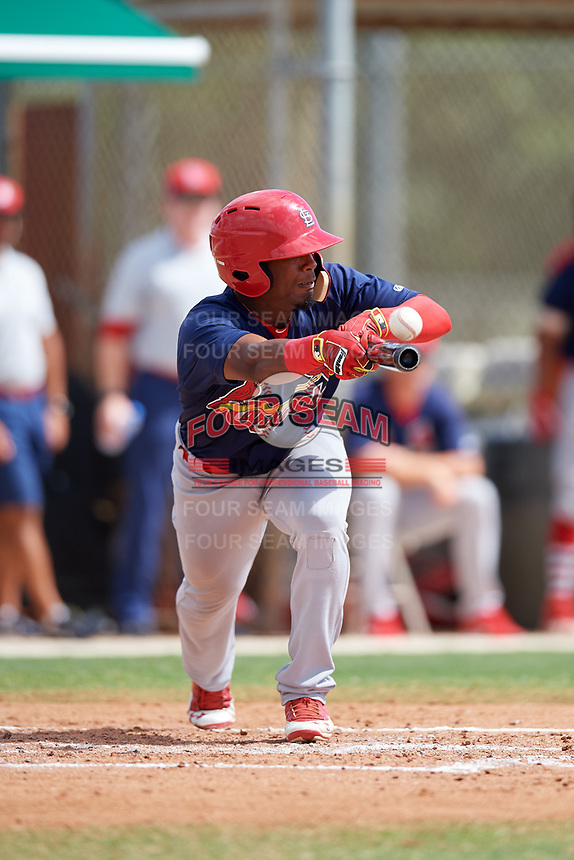 GCL Cardinals designated hitter William Jimenez (12) squares around to bunt during a game against the GCL Marlins on August 4, 2018 at Roger Dean Chevrolet Stadium in Jupiter, Florida.  GCL Marlins defeated GCL Cardinals 6-3.  (Mike Janes/Four Seam Images)