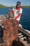 Worker shows oyster tray that has never been cleaned, overgrown with many sponges, tunicates, soft corals and more