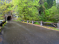 Old Columbia River Higghway and tunnel. Columbia River Gorge National Scenic Area. Oregon