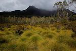 ..Frog Flats plains at the bottom of Mount Pelion..Plaines de Frog Flats au pied du Mont pélion