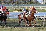 Wicked Tune (FL) with jockey Elvis Trujillo on board wins the Gulfstream Park Turf Sprint at Gulfstream Park. Hallandale Beach, Florida  02-01-2014