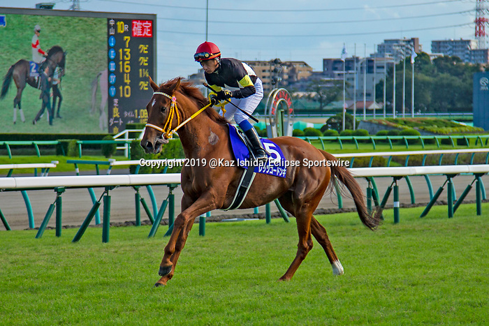 FUNABASHI,JAPAN-SEP 29: Let's Go Donki (5th place), is post parading before the Sprinters Stakes at Nakayama Racecourse on September 29,2019 in Funabashi,Chiba,Japan. Kaz Ishida/Eclipse Sportswire/CSM