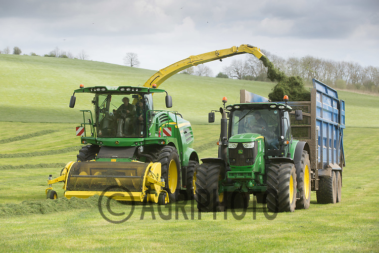 Contractors take a first cut of silage on the 10th of April at Will Armitage's Keythorpe Lakes Farm,Tugby,Leicestershire <br /> Picture Tim Scrivener 07850 303986<br /> ….covering agriculture in the UK….