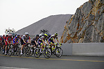Riders climb the final 4km of Jais Mountain during Stage 5 of the 2021 UAE Tour running 170km from Fujairah to Jebel Jais, Ras Al Khaimah, UAE. 25th February 2021.  <br /> Picture: Eoin Clarke   Cyclefile<br /> <br /> All photos usage must carry mandatory copyright credit (© Cyclefile   Eoin Clarke)