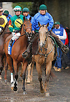 """October 02, 2015:  Dream Dance and jockey Brian Hernandez Jr. in the 64th running of The Darley Alcibiades (Grade 1) $400,000 """"Win and You're In Juvenile Fillies Division"""" at Keeneland for trainer Neil Howard, and owner Stoneway Farm.   Candice Chavez/ESW/CSM"""