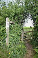 Public footpath - Norfolk