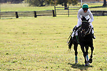 Jockey Jody Petty and his horse Irish Prince celebrate as they win The Genesee Valley Hunt Cup  during the Genesee Valley Hunt Races held at The Nations Farm in Geneseo, NY.