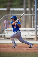 New York Mets Pete Alonso (19) bats during a minor league Spring Training game against the St. Louis Cardinals on March 28, 2017 at the Roger Dean Stadium Complex in Jupiter, Florida.  (Mike Janes/Four Seam Images)