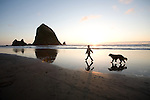Haystack Rock Cannon Beach, Oregon, at sunset with dog walking