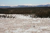 Sunday March 11, 2007   ----    Martin Buser runs in the tundra nearing Unalakleet on Sunday afternoon.