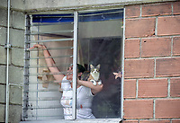 MEDELLIN - COLOMBIA, 02-05-2020: Una mujer realiza labores de limpieza en la ventana de su apartamento acompañada de su gato en Medellín durante el día 40 de la cuarentena total en el territorio colombiano causada por la pandemia  del Coronavirus, COVID-19. / A woman cleans her window with her cat in Medellin of during day 40 of total quarantine in Colombian territory caused by the Coronavirus pandemic, COVID-19. Photo: VizzorImage / Leon Monsalve / Cont